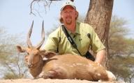 Chobe Bushbuck