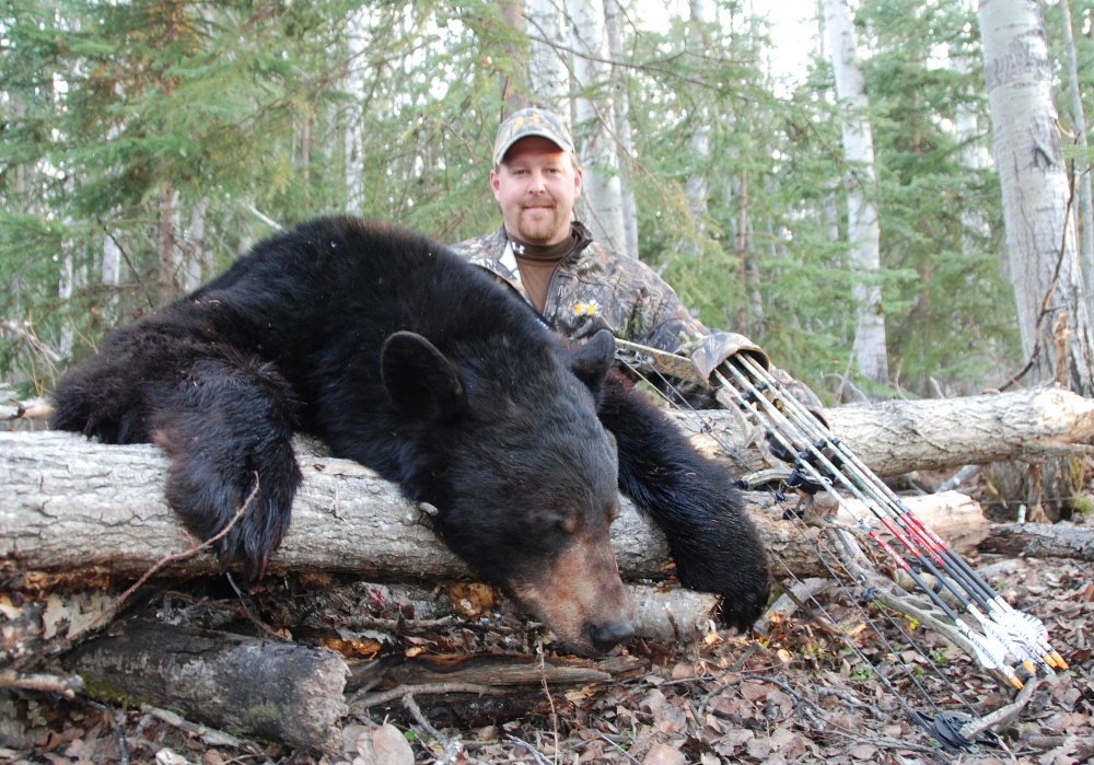 1st Bear I red.