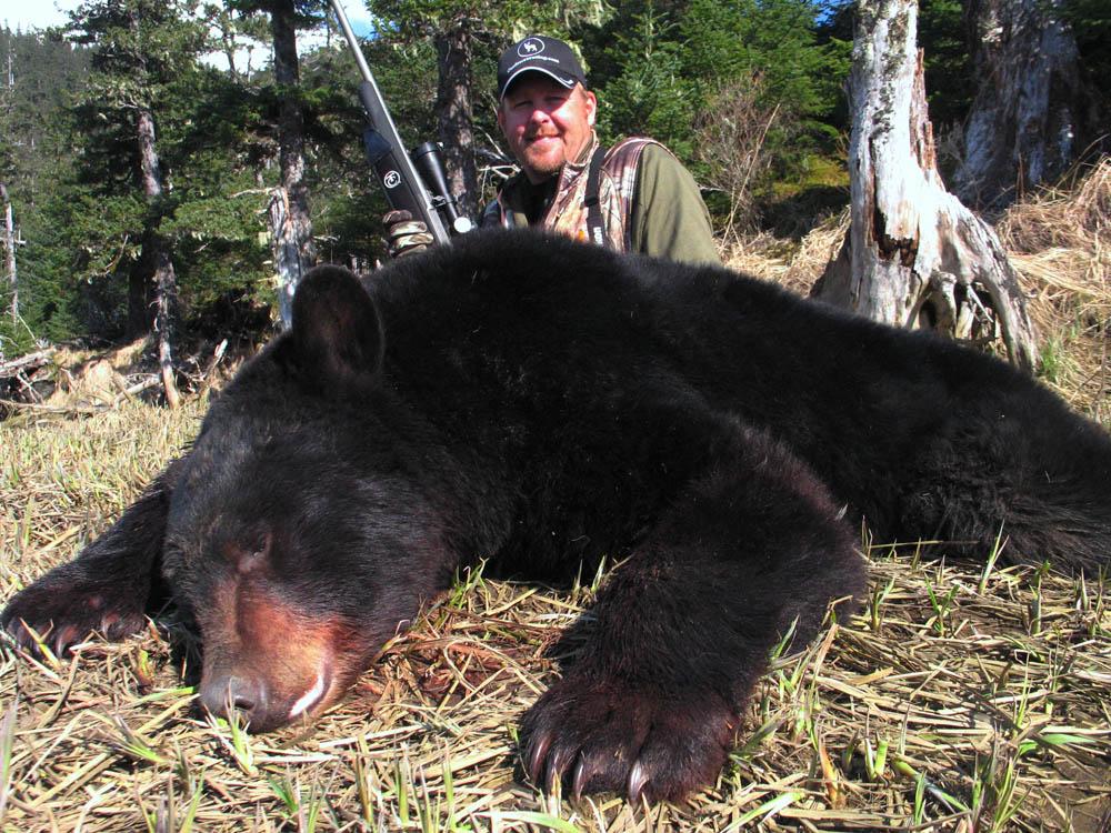 tim bear II